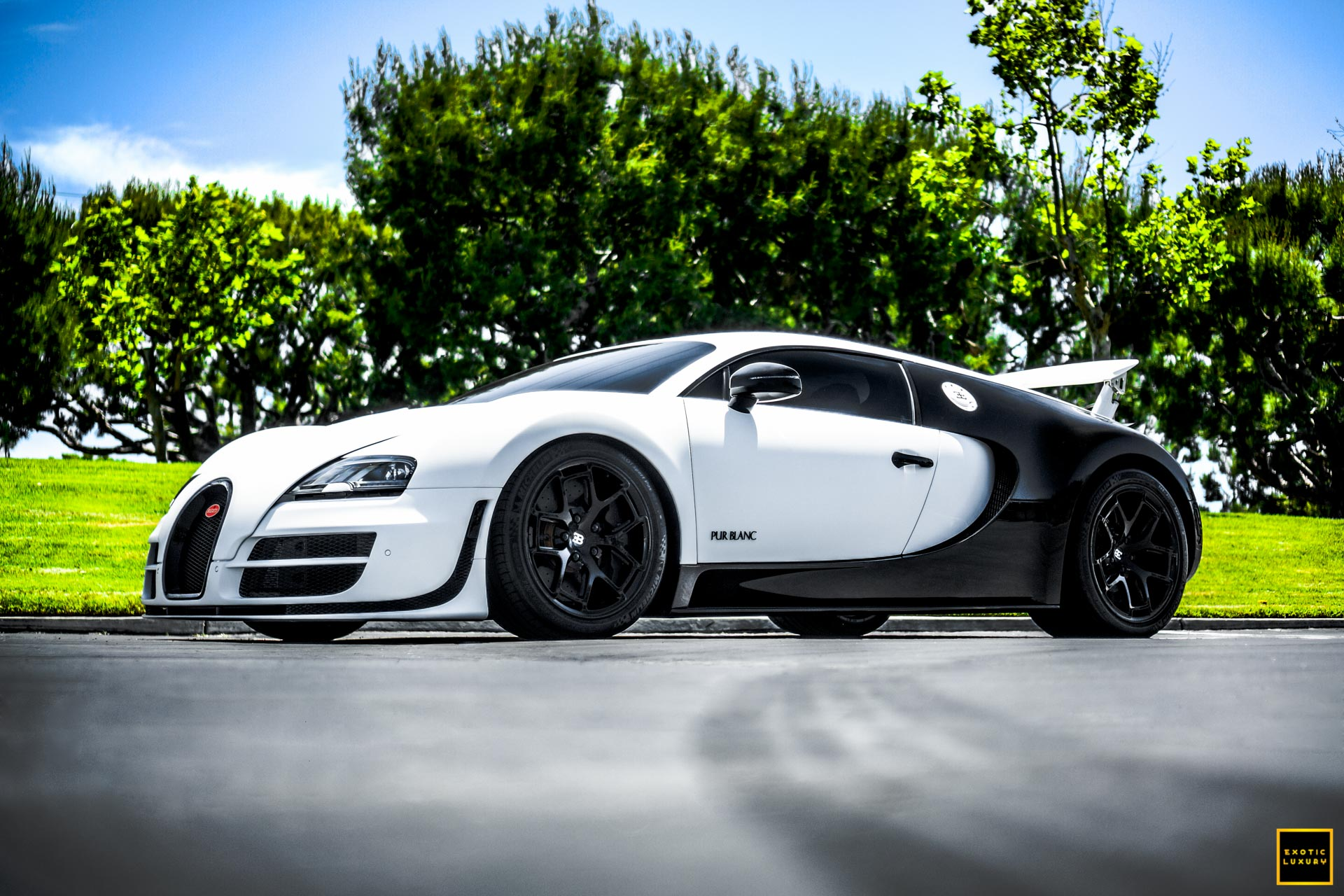 Bugatti Veyron - Paint Protection by Protective Film Solutions
